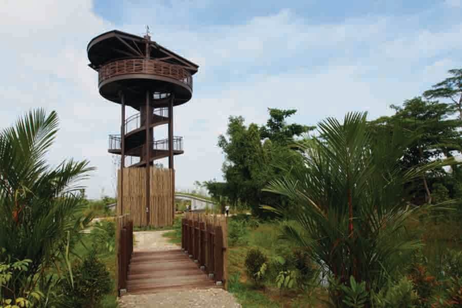sightseeing tower with a green landscape