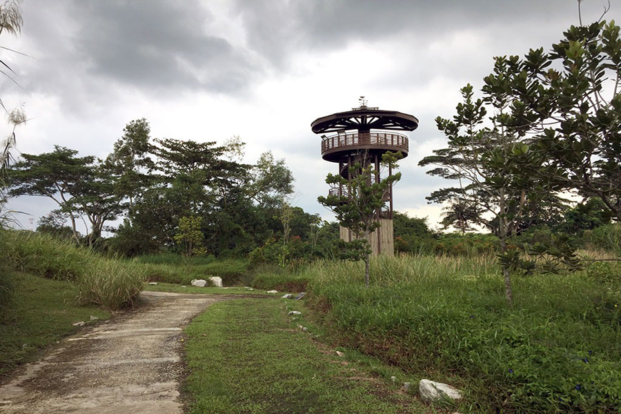 Kranji marshes observation tower.